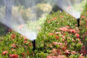 Conroe Sprinkler Systems